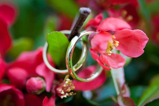 bodas de oro flores